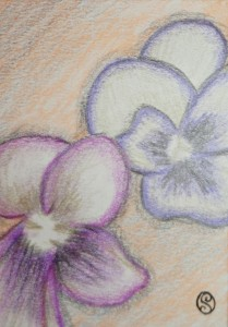 Day 55: Creamcicle Flower