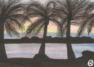 Day 65: Sunset Dreams