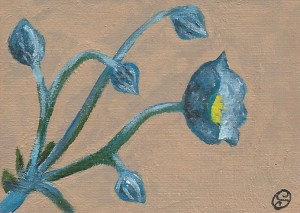 Day 72: Reign of the Blue Flowers