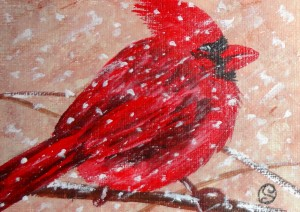 Day 77: Cardinal in a Snowstorm